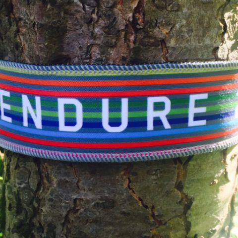 Endure24 Headband